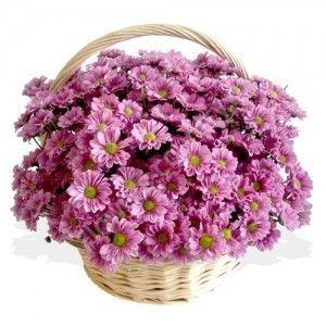 Букет из кустовых хризантемам в корзине