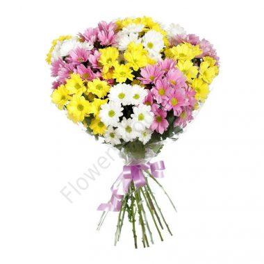 Букет белых, желтых и розовых хризантем