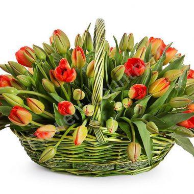 Букет из 101 тюльпан красный в корзине