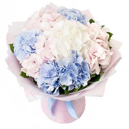Букет из гортензий (розово-голубой)