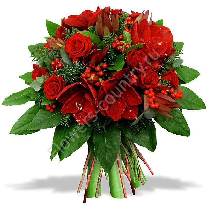Букет из амариллиса и розы