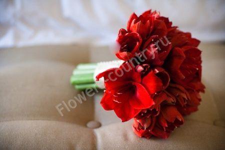 Букет невесты из красных амариллисов