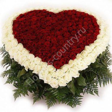 Букет из 303 белых и красных роз в корзине