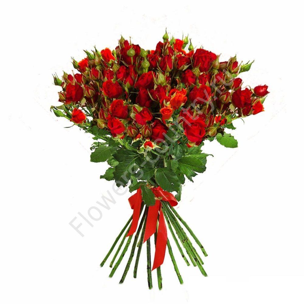 Букет из 15 кустовой розы