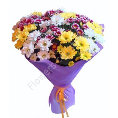 Букет из 15 хризантем разноцветных