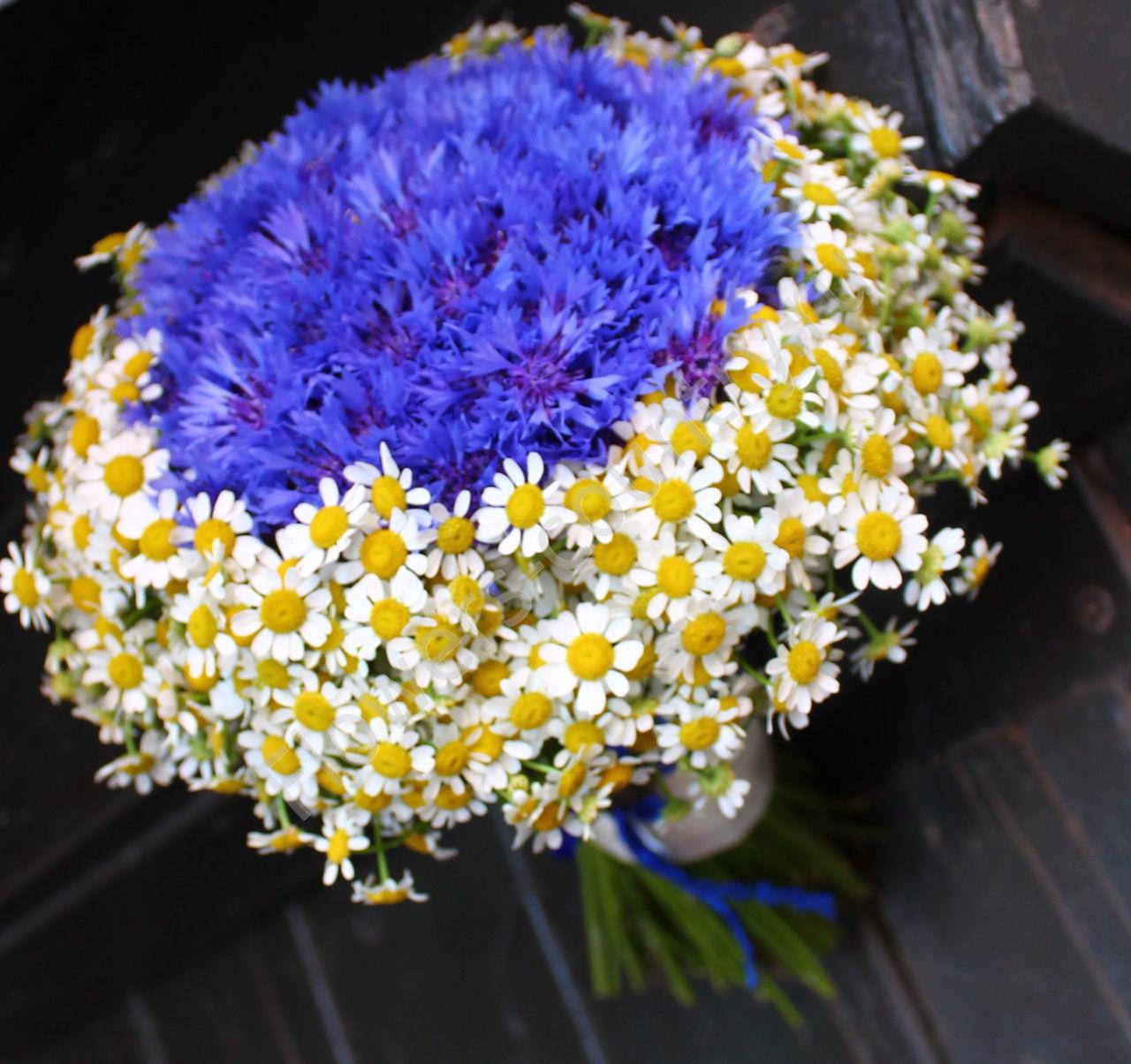 Купить букет цветов из васильков в москве