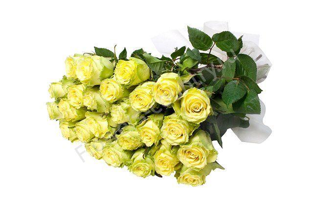 Букет из 25 зеленых роз