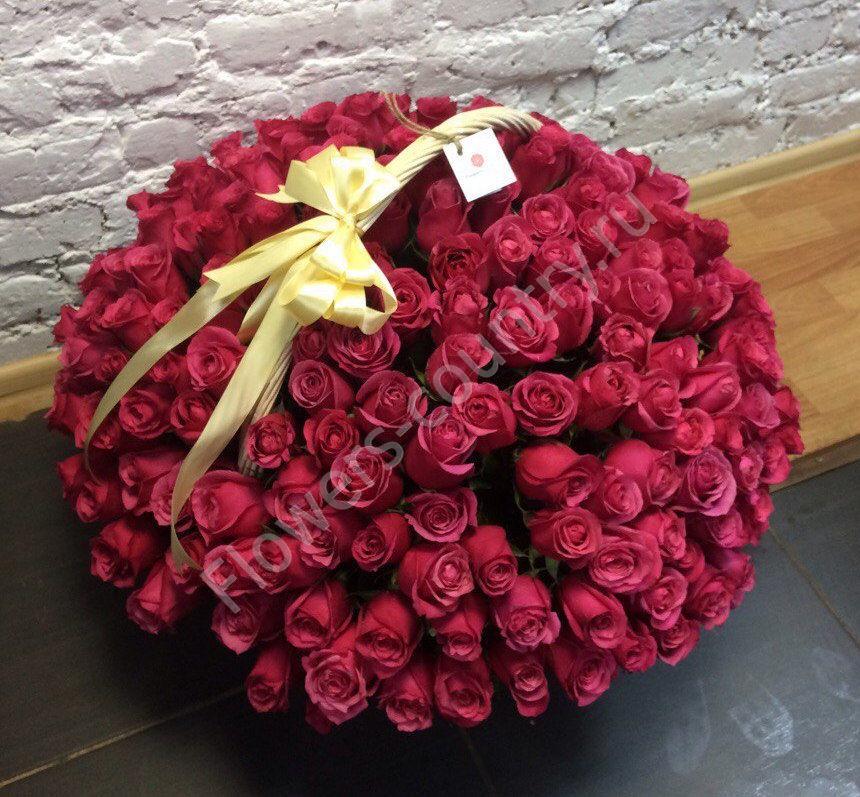 Букет 201 пурпурной розы в корзине