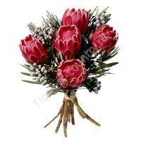 Букет из 5 цветков протеи