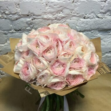Букет из розового ранункулюса (35 шт.)