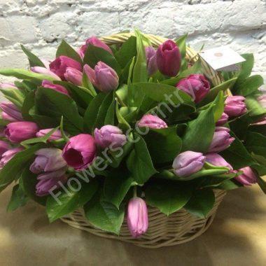 Букет из тюльпанов фиолетовых