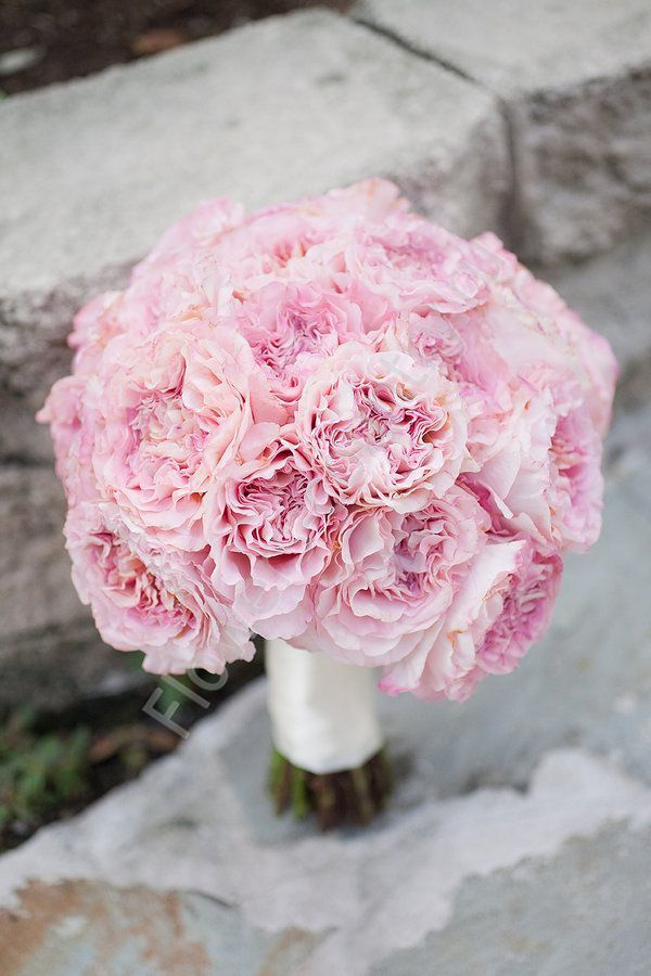 Доставка, букет невесты гвоздики розовые