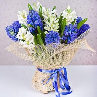 Букет из 15 синих и белых гиацинтов