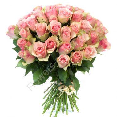Букет из 51 розы «Малибу»