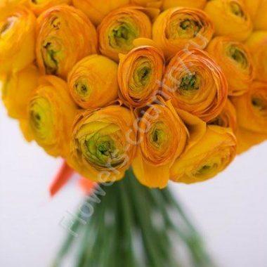 Букет из оранжевых ранункулюсов