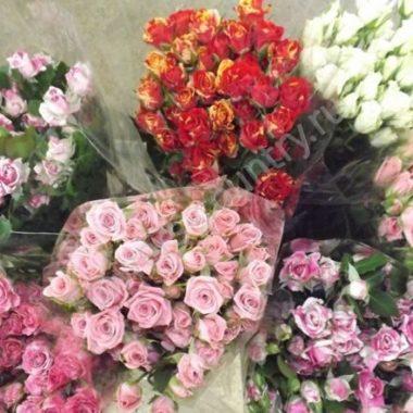 Кустовая роза оптом