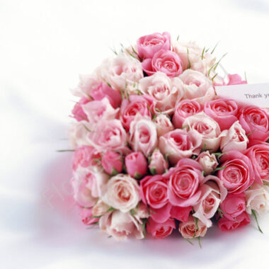 Букет из нежно-розовых роз